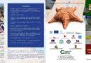 Brochure 25fe